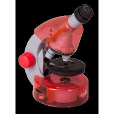 Микроскоп Levenhuk LabZZ M101 Orange (Апельсин)